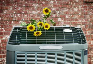 air-conditioning-with-flowers